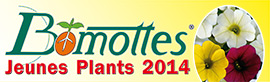 collection de BOMOTTES Jeunes Plants 2014