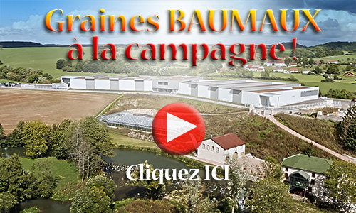 video_baumaux_campagne_500px.jpg