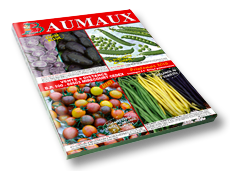 image catalogue Baumaux