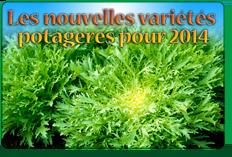 NEWSLETTER BAUMAUX : LES NOUVELLES VARIÉTÉS POTAGÈRES pour 2014 (1ère partie)