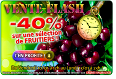 VENTE FLASH N°1 : -40% sur une Sélection de FRUITIERS !
