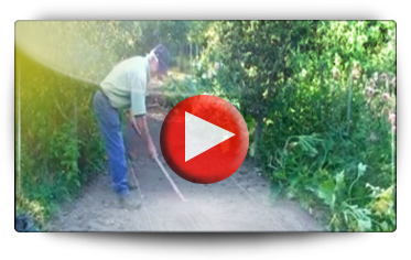 JARDI NATURE - Vidéo BAUMAUX