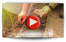 Conseils pour vos semis de laitues - Vidéo BAUMAUX