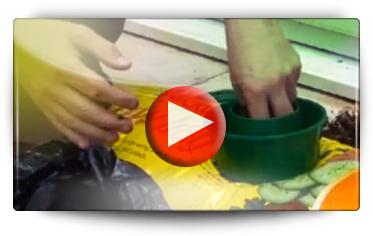 MINI GROWPOT 7860 - Vidéo BAUMAUX