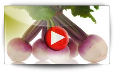 Navet Sweetbell - Vidéo BAUMAUX