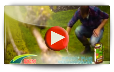 REGARNISSAGE PELOUSE DCM - Vidéo BAUMAUX