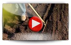 Conseils pour le semis des carottes - Vidéo BAUMAUX