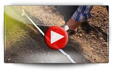 Découvrez les 3 façons de semer les radis - Vidéo BAUMAUX