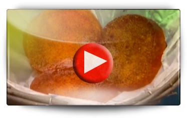 WATER SLICE 78580 - Vidéo BAUMAUX