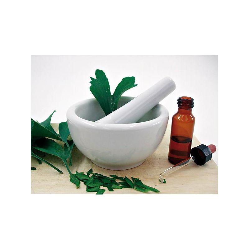TOMATE LATOMATEBLEUE BAUMAUX® (indigo rose)