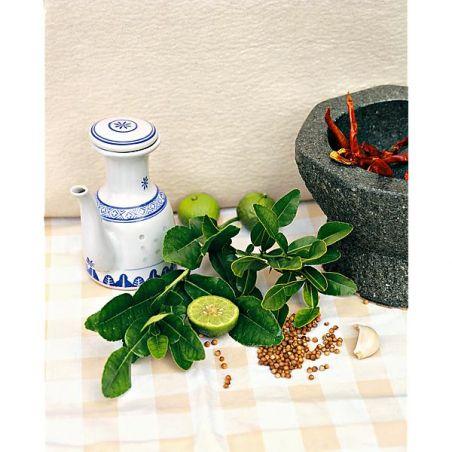 COMBAVA ou KAFFIR (citrus hystrix)