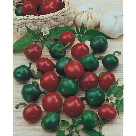 PIMENT RED CHERRY SMALL (ciliegia piccante)