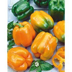 Engrais Liquide Potager &Amp; Plantes Aromatiques