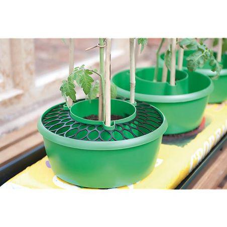 3 GRILLES pour PLANT HALOS