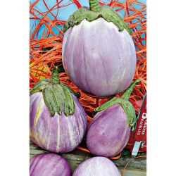 Tomate Smarald