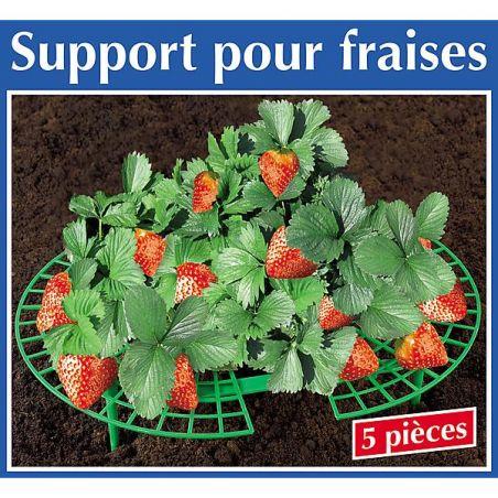 SUPPORT pour FRAISES