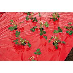 Coup De Boost'® Plantes Potagères