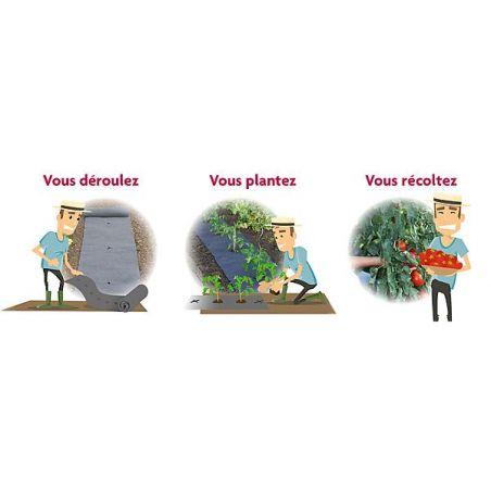 FEUTRES de CULTURE PRÉ-PERCÉS TOMATES/FRAISIERS