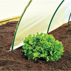 Engrais Plantes Acidophiles