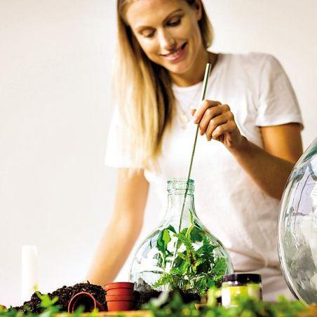CHARBON ACTIF NATUREL pour PLANTES