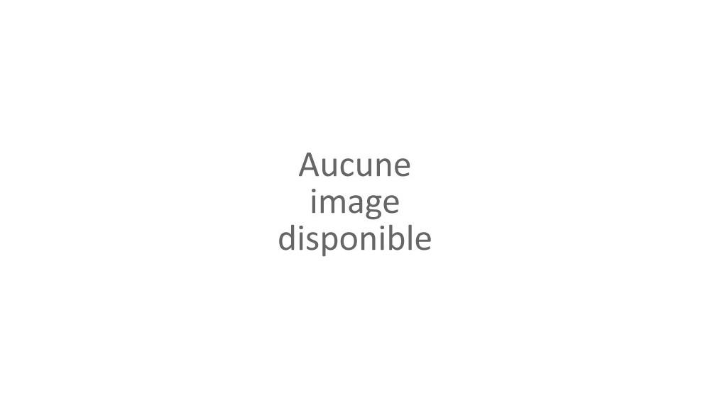 FERTILISATEUR pour semoir 77501